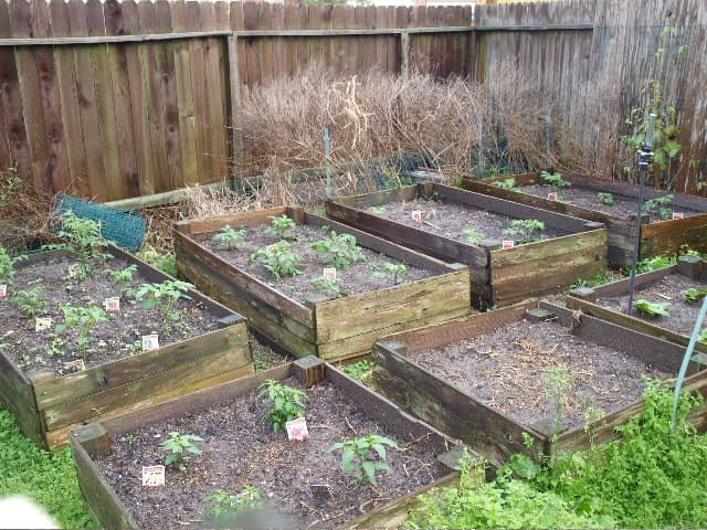 Making the Most of a Small Space Garden
