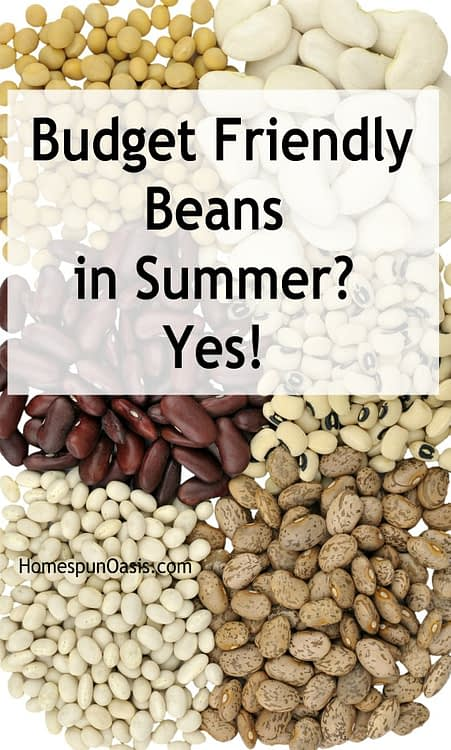 Budget Friendly Beans in Summer? Yes!