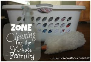 Zone-Cleaning