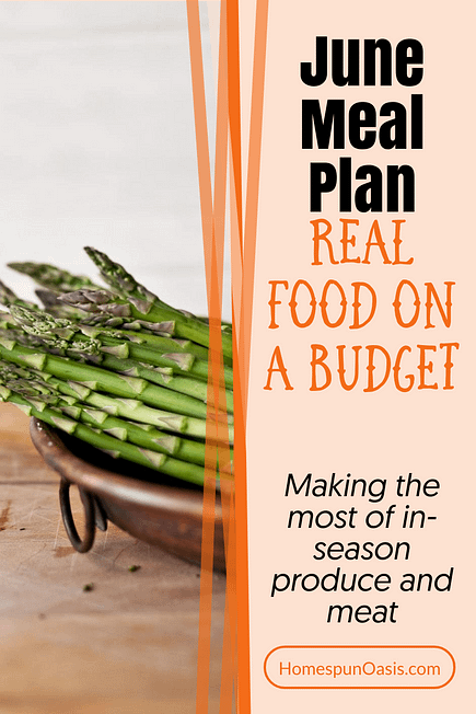 June Meal Plan Ideas