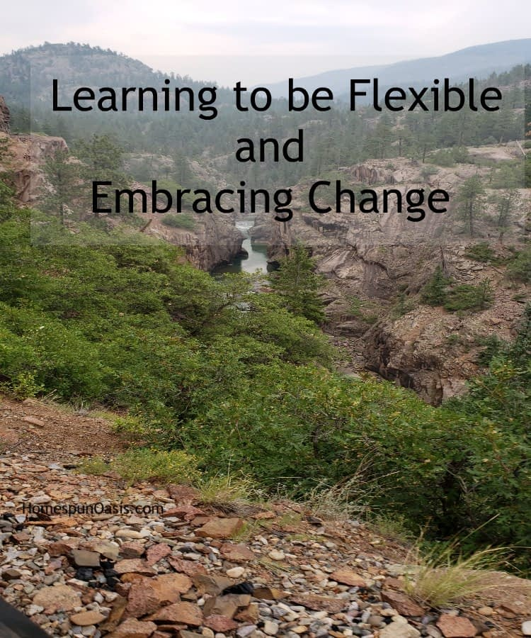 Learning to be Flexible and Embracing Change